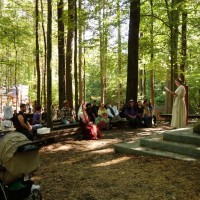A wedding in the grove