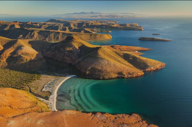 Wild Baja Sea of Cortez _Huffington Post