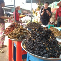 Fried Spiders, Insect Market - Skuon, Cambodia