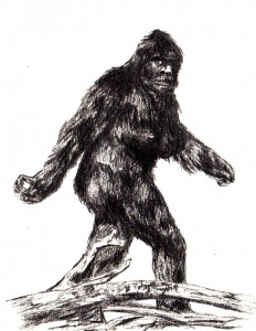 Sasquatch, image by Rowdy Robert