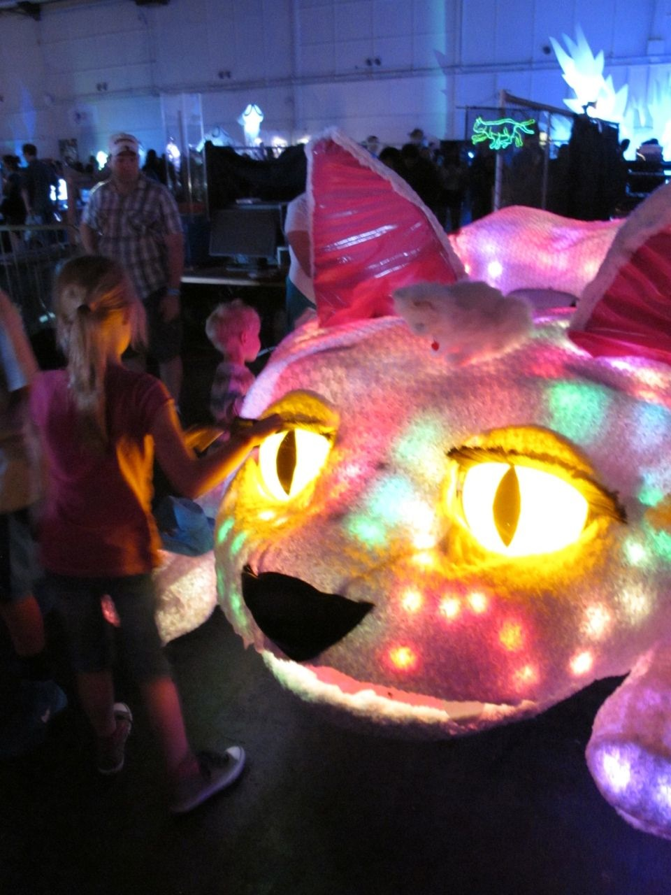 Glowing Cat Car
